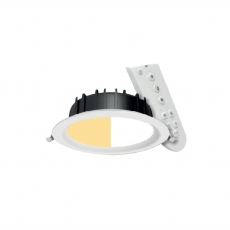 Connected Downlight
