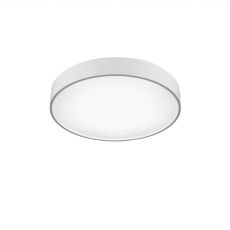 SURFACE CEILING LIGHTING