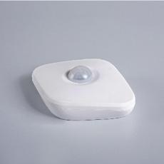 Motion & Light Sensor